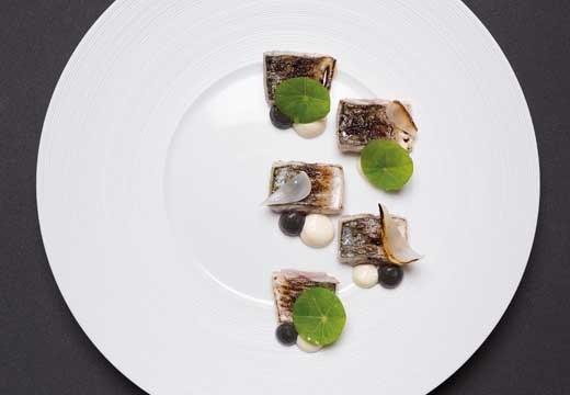 Mackerel and Grand Cru Vivalto Lungo